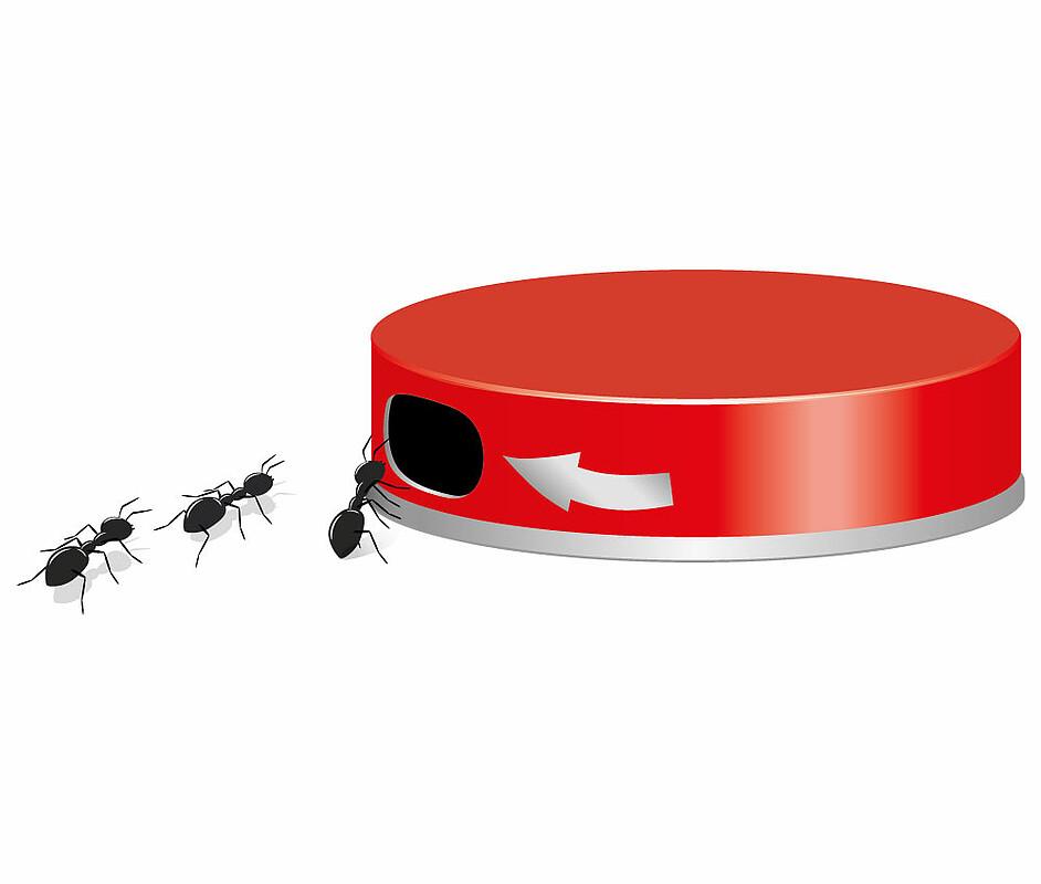 Ameisen-Köderdose   Aeroxon Insect Control GmbH